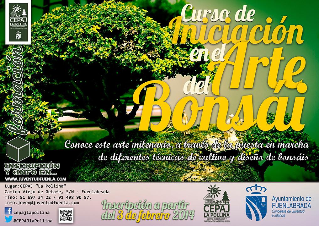 """Curso de iniciación en el arte del bonsái. En el CEPAJ """"La Pollina"""" de Fuenlabrada."""